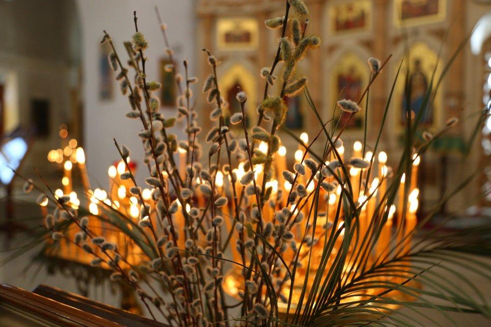 Вербное воскресенье: дата, традиции и запреты | 16.04.21 | Яркуб