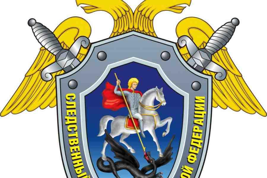 ВЯрославле 5-летний парень упал состены музея-заповедника
