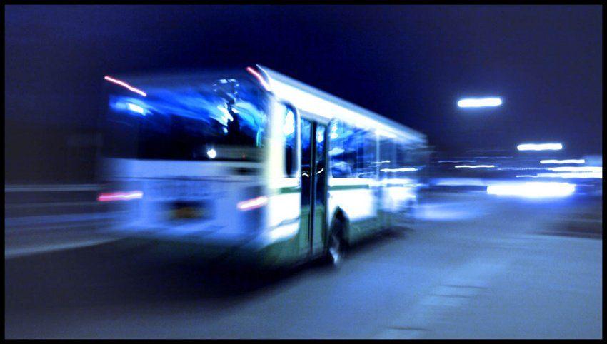 На «Лыжню России» пустят бесплатный автобус