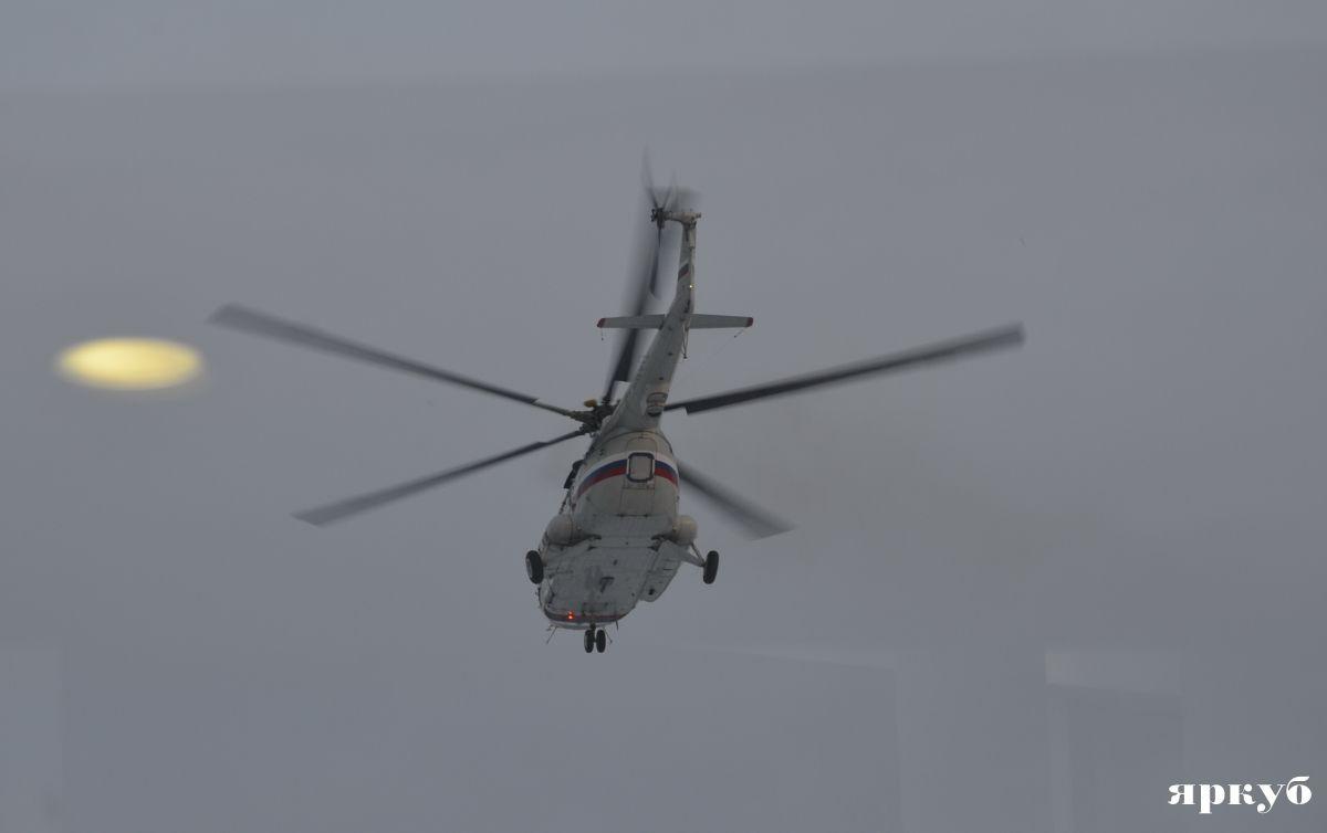 Елена летучая новости май 2017